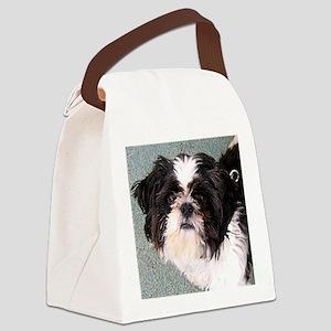 Teddy Canvas Lunch Bag