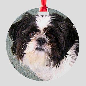 Teddy Round Ornament
