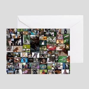2012 Peoples Choice 17 x 11 Greeting Card
