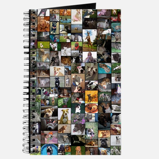 2012 Peoples Choice 23 x 35 Journal