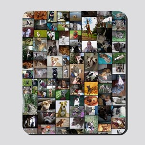 2012 Peoples Choice 23 x 35 Mousepad