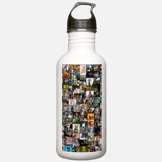 2012 Peoples Choice 23 Sports Water Bottle