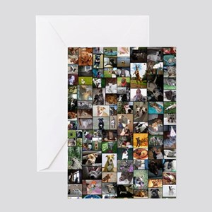 2012 Peoples Choice 23 x 35 Greeting Card