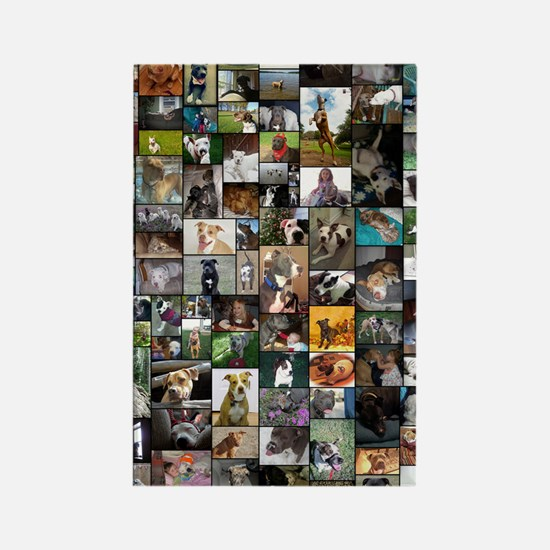 2012 Peoples Choice 23 x 35 Rectangle Magnet