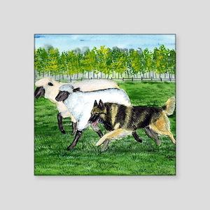 "bel terv herd Square Sticker 3"" x 3"""