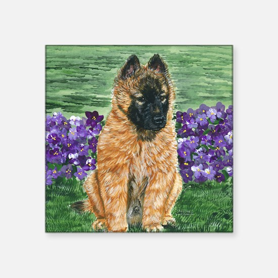 "bel terv pup Square Sticker 3"" x 3"""