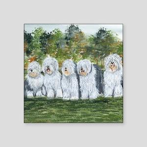 "old english sheepdog Square Sticker 3"" x 3"""