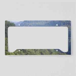 336401565506 License Plate Holder