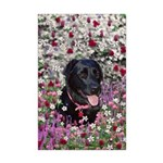 Abby Black Lab in Flowers Mini Poster Print
