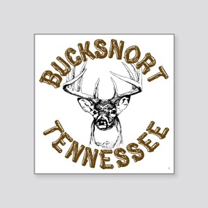 "20110518 - BucksnortTN - PI Square Sticker 3"" x 3"""