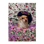 Chi Chi Chihuahua Flowers 5'x7'Area Rug