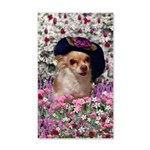 Chi Chi Chihuahua Flowers 20x12 Wall Decal