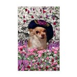 Chi Chi Chihuahua Flowers Mini Poster Print
