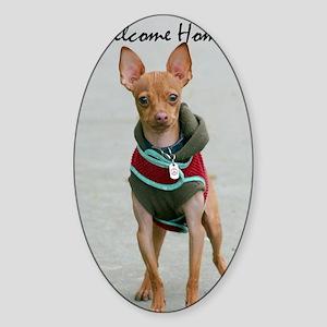 welcome home chihuahua Sticker (Oval)