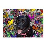 Abby Black Lab Butterflies 5'x7'Area Rug
