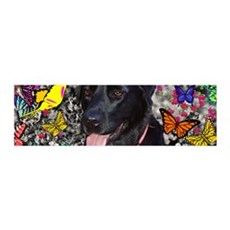 Abby Black Lab Butterflies Wall Decal