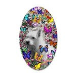 Violet Westie Buterflies 20x12 Oval Wall Decal