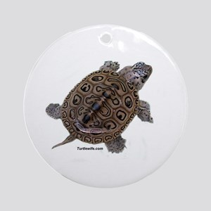 Diamondback Terrapin baby Ornament (Round)