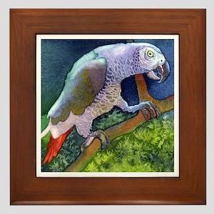 African Grey Parrot Bird Framed Tile