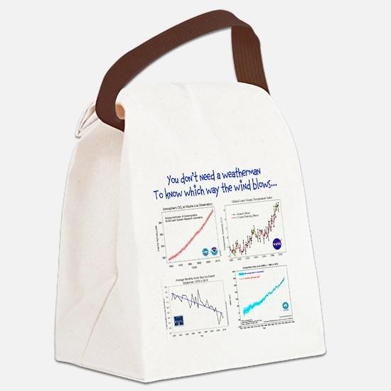 weatherman Canvas Lunch Bag