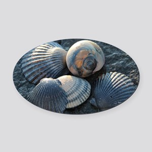 Sea Shells Oval Car Magnet