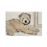 Wheaten Terrier Puppy Rectangle Magnet (100 pack)