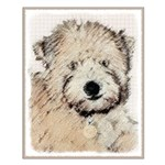 Wheaten Terrier Puppy Small Poster