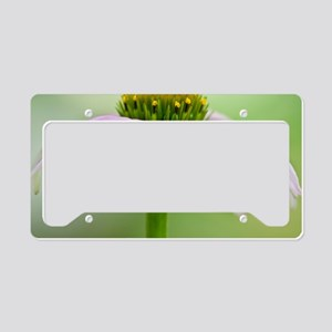 Coneflower License Plate Holder