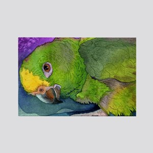 Amazon Parrot Rectangle Magnet (10 pack)