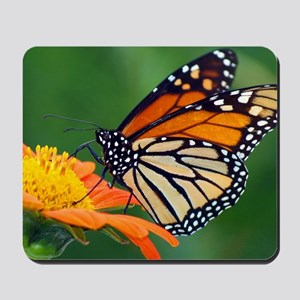 Monarch  Mexican Sun 213 Cleaned Mousepad