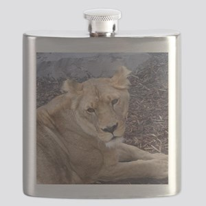The Lioness Flask