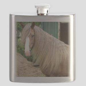 frostybarn1headsoftlge large Flask