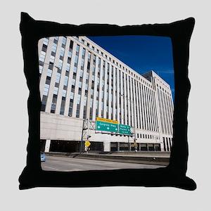5D-22 IMG_0044-NOTECARD Throw Pillow