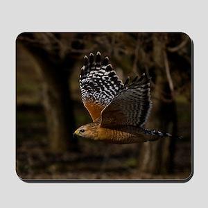 (4) Red Shouldered Hawk Flying Mousepad