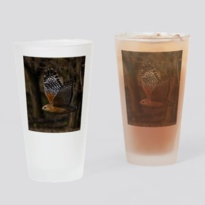 (4) Red Shouldered Hawk Flying Drinking Glass
