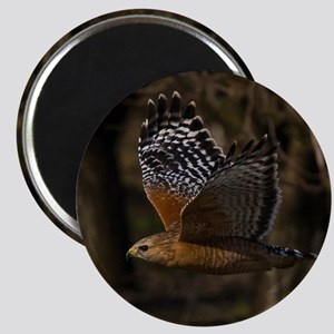 (15) Red Shouldered Hawk Flying Magnet