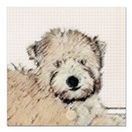 Wheaten Terrier Puppy Square Car Magnet 3
