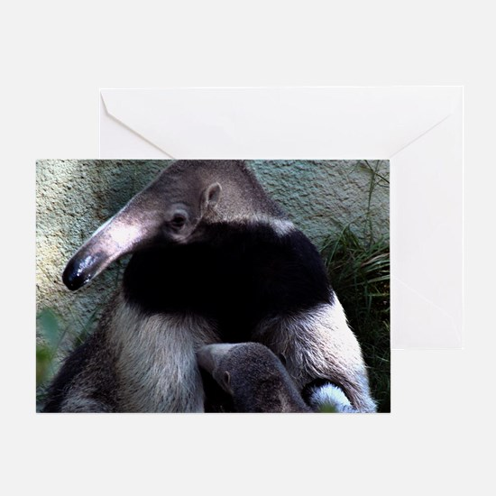 Mother Anteater nursing her young Greeting Card