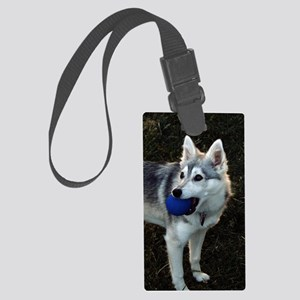 Alaskan Klee Kai with a blue bal Large Luggage Tag