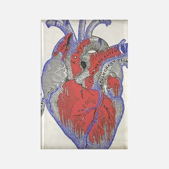 heart-vintage copy Rectangle Magnet