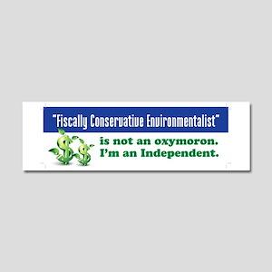 Fiscally conservative environmen Car Magnet 10 x 3