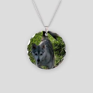 Alaskan Klee Kai surround in Necklace Circle Charm