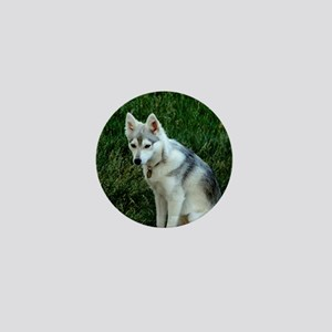 Alaskan Klee Kai sitting on green gras Mini Button