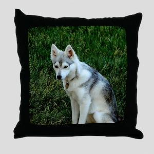 Alaskan Klee Kai sitting on green gra Throw Pillow