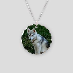 Alaskan Klee Kai sitting on  Necklace Circle Charm