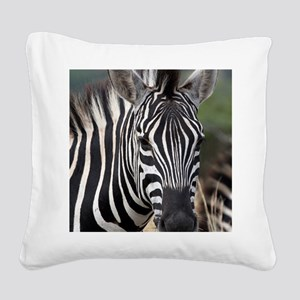 single zebra Square Canvas Pillow