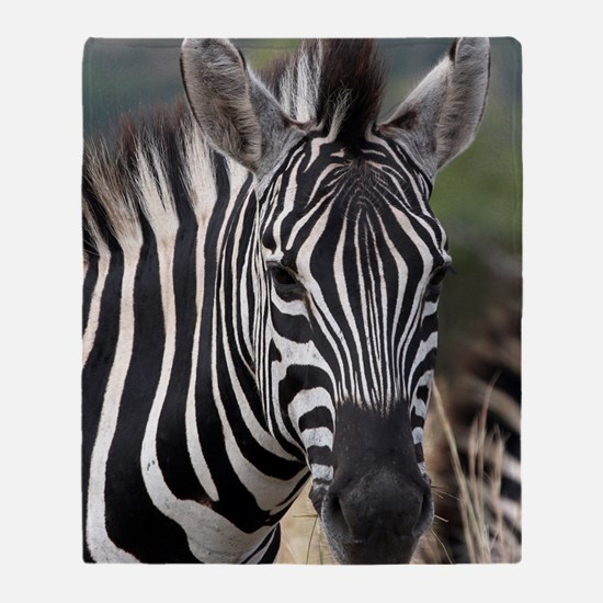single zebra Throw Blanket