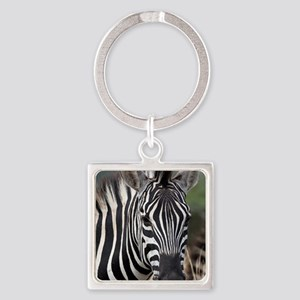 single zebra Square Keychain