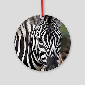 single zebra Round Ornament