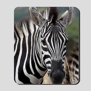 single zebra Mousepad